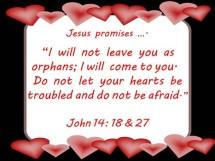 not leave u