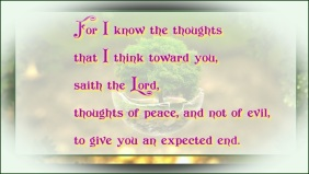 Jeremiah 29 11-excepted end