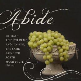 abide in Christ