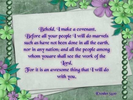 Exodus 34 10