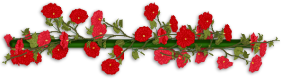 Flower-Divider-frugalmomandwife