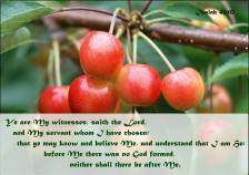 Isaiah 43 10