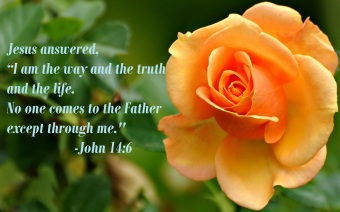 John 14 6