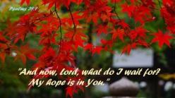 psalms 39 7