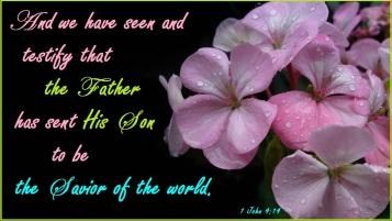 1 John 4 14