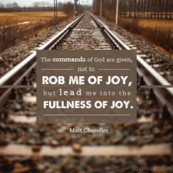 fullness of Joy